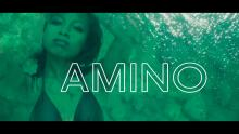 Embedded thumbnail for Amino