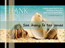 Embedded thumbnail for Soa ihany