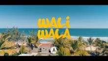 Embedded thumbnail for Waliwala